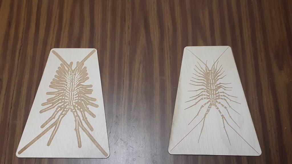 Centipede plaques